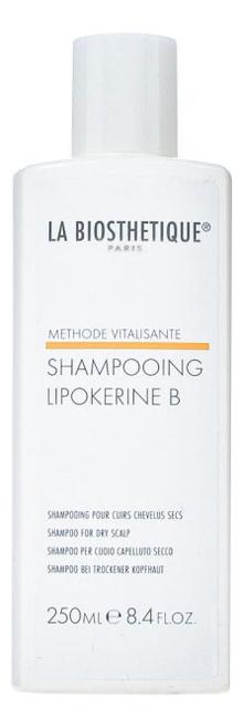 Шампунь для сухой кожи головы Methode Vitalisante Shampooing Lipokerine B 250мл la biosthetique lipokerine a шампунь для жирной кожи головы 1000 мл
