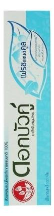 Зубная паста растительная с травами Herbal Fresh & Cool Toothpaste 100г: Зубная паста 100г