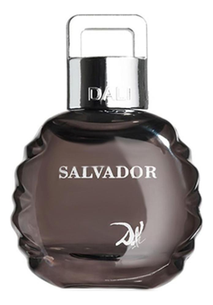Salvador Dali Salvador: туалетная вода 100мл тестер