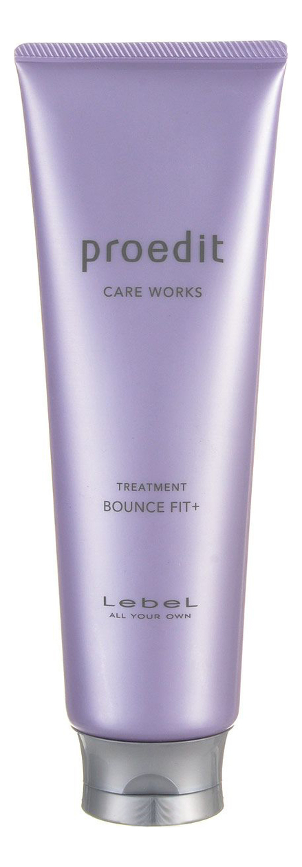 Купить Маска для очень поврежденных волос Proedit Care Works Treatment Bounce Fit Plus: Маска 250мл, Lebel
