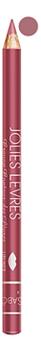 Карандаш для губ Jolies Levres Crayon Contour Des Levres 1,4г: No 107 nutritic levres