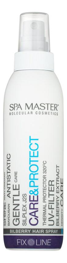 Купить Черничный спрей для защиты волос Care & Protect Bilberry Hair Spray 200мл, Черничный спрей для защиты волос Care & Protect Bilberry Hair Spray 200мл, Spa Master Professional