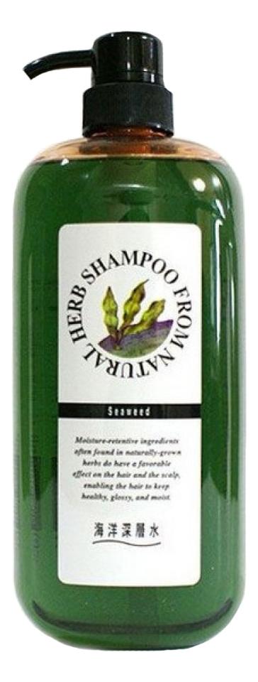 Шампунь для волос с экстрактом бурых водорoслей Natural Herb Shampoo From 1000мл