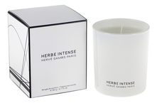 Herve Gambs Paris Herbe Intense