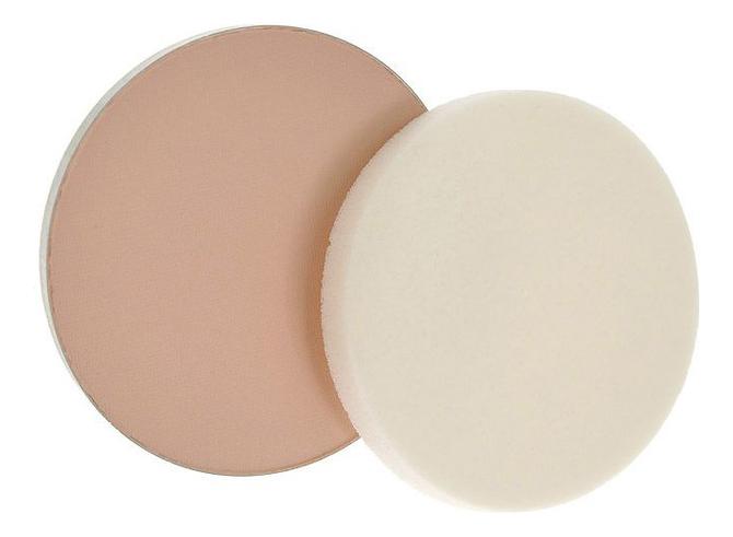 Компактная пудра для лица Skin Compact Powder 5г: S402 Medium