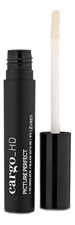 Cargo Cosmetics База под макияж губ HD Picture Perfect HD Lip Primer 4,46г