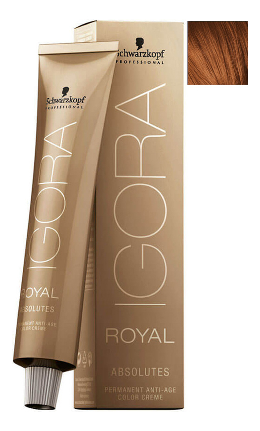 Крем-краска для волос Igora Royal Absolutes 60мл: 6-70 Dark Blonde Copper Natural