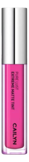 Матовый тинт для губ Pure Lust Extreme Matte Tint 3,5мл: 13 Perfectionist
