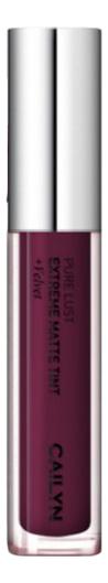 Матовый тинт для губ Pure Lust Extreme Matte Tint + Velvet 3,5мл: 45 Fashionable