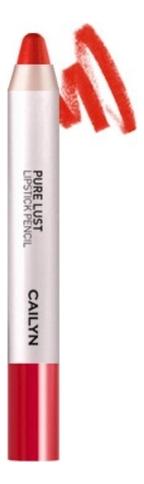 Купить Карандаш-помада для губ Pure Lust Lipstick Pencil 2, 8г: 03 Apple, CAILYN