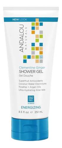 Гель для душа Clementine Ginger Shower Gel Energizing 251мл (имбирь и клементин) гель для душа energizing shower gel green tea гель для душа 250мл