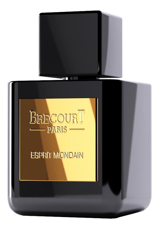 Brecourt Esprit Mondain: парфюмерная вода 50мл brecourt esprit mondain туалетные духи тестер 100 мл