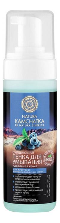 Купить Очищающая пенка для умывания Идеальная кожа Natura Kamchatka 150мл, Natura Siberica