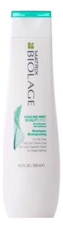 Шампунь для волос освежающий Biolage Scalpsync Cooling Mint Shampoo 250мл