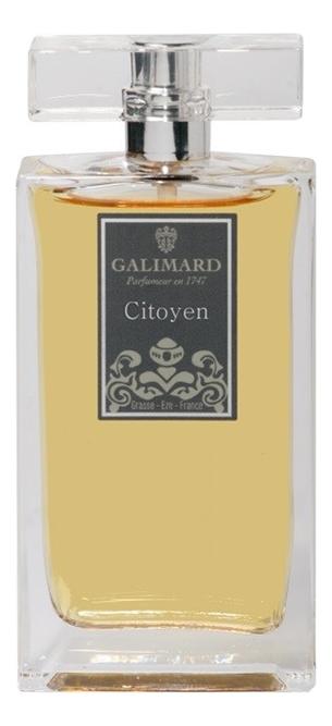 Купить Citoyen Men: парфюмерная вода 100мл, Galimard