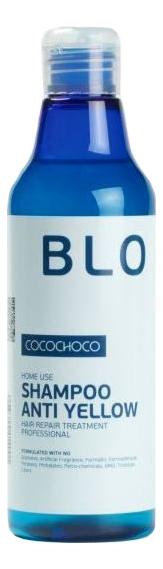 Шампунь для осветленных волос Blonde Shampoo Anti Yellow: Шампунь 250мл недорого