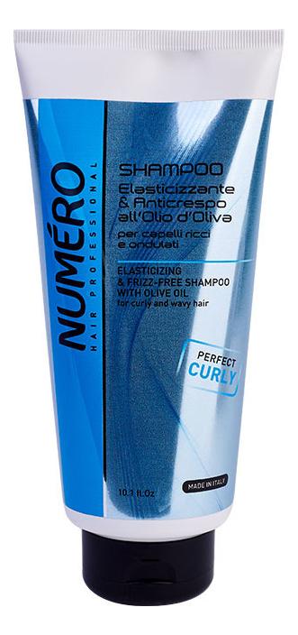 Купить Шампунь с оливковым маслом для вьющихся и волнистых волос Numero Elasticizing & Frizz-Free Shampoo: Шампунь 300мл, Шампунь с оливковым маслом для вьющихся и волнистых волос Numero Elasticizing & Frizz-Free Shampoo, Brelil Professional