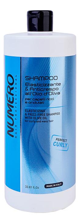 Купить Шампунь с оливковым маслом для вьющихся и волнистых волос Numero Elasticizing & Frizz-Free Shampoo: Шампунь 1000мл, Шампунь с оливковым маслом для вьющихся и волнистых волос Numero Elasticizing & Frizz-Free Shampoo, Brelil Professional