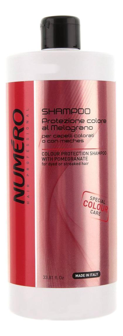 Купить Шампунь для защиты цвета волос с экстрактом граната Numero Colour Protection Shampoo With Pomegranate: Шампунь 1000мл, Brelil Professional