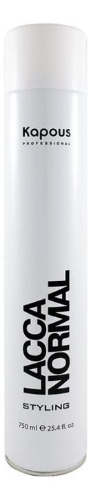 Лак аэрозольный для волос нормальной фиксации Styling Lacca Normal Styling: Лак 750мл недорого