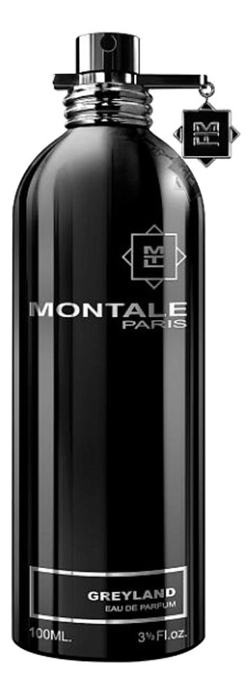Фото - Montale Greyland: парфюмерная вода 100мл тестер montale aqua gold парфюмерная вода 100мл тестер