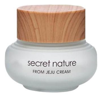 Купить Увлажняющий крем для лица с экстрактом зеленого чая From Jeju Line Cream 50мл, Secret Nature