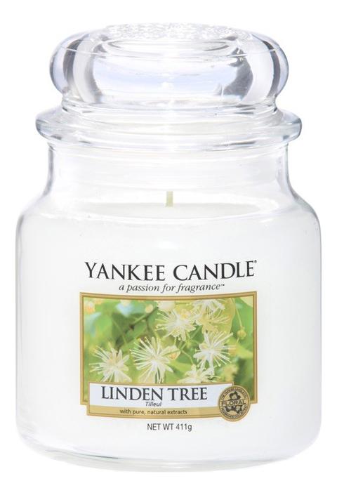 Ароматическая свеча Linden Tree: Свеча 411г ароматическая свеча vibrant saffron свеча 411г