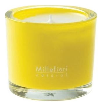 Ароматическая свеча Грейпфрут Natural Pompelmo 180г автоаромат грейпфрут millefiori milano