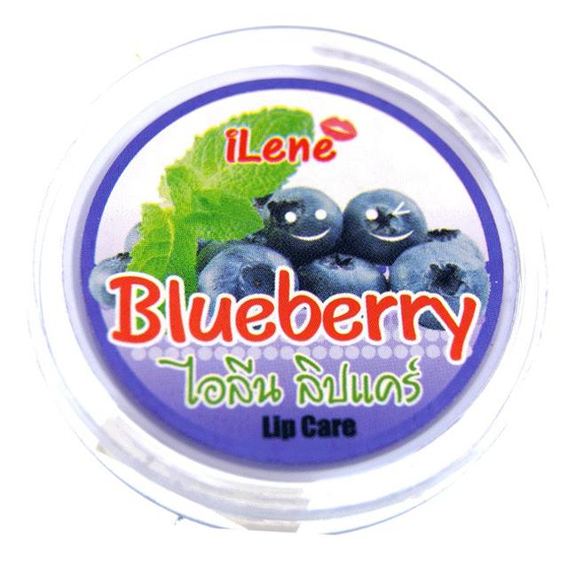 Увлажняющий бальзам для губ Blueberry Natural Lip Moisturizer 10г (черника) недорого