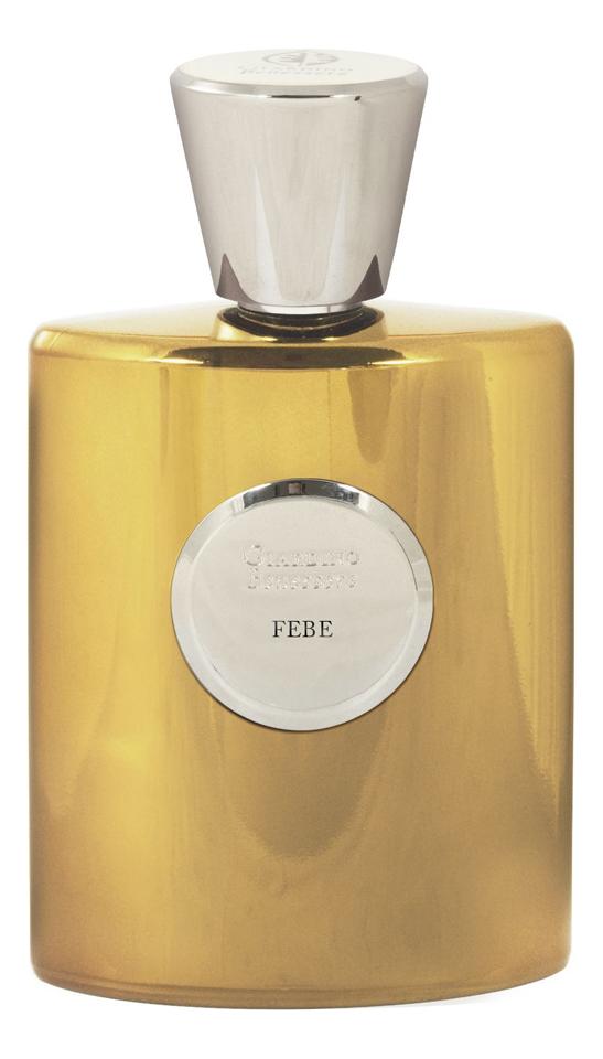 Купить Febe: духи 100мл, Giardino Benessere