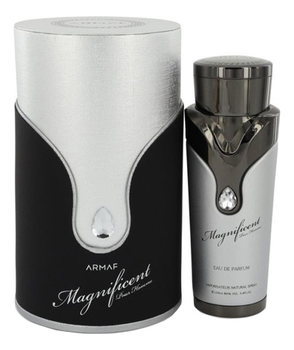 Купить Magnificent Pour Homme: парфюмерная вода 100мл, Armaf
