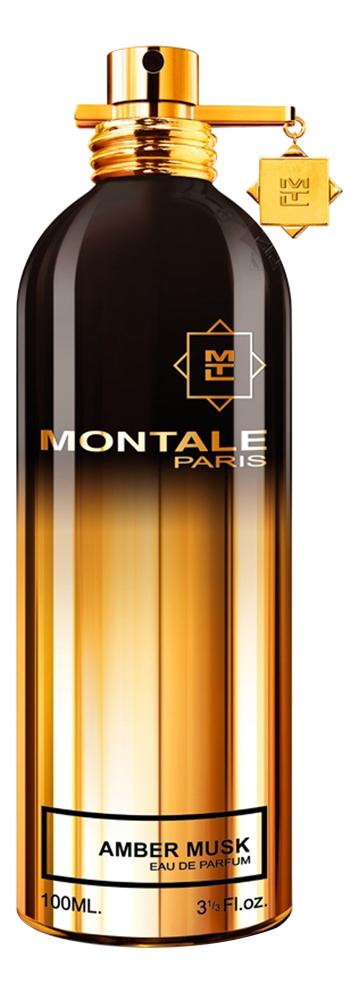 Купить Amber Musk: парфюмерная вода 2мл, Montale