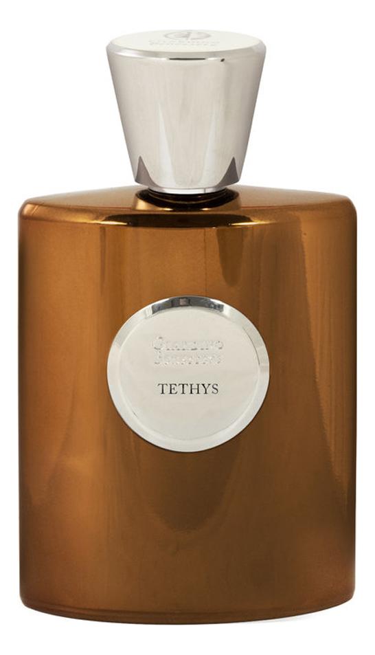 Giardino Benessere Tethys: духи 100мл тестер giardino benessere rosa dorotea отливант парфюмированная вода 18 мл