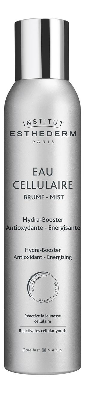 Спрей-мист для лица Клеточная вода Eau CellulaireBrume HydraAntioxydante: Спрей-мист 100мл крем мист для лица
