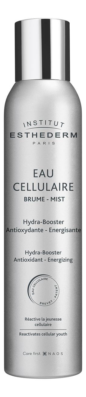 Спрей-мист для лица Клеточная вода Eau CellulaireBrume HydraAntioxydante: Спрей-мист 200мл крем мист для лица