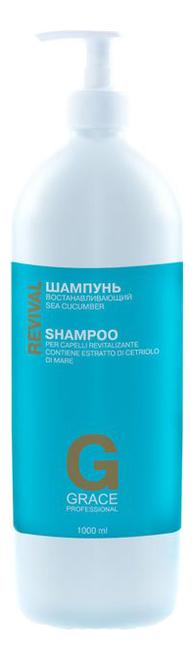Восстанавливающий шампунь для волос с экстрактом дальневосточного трепанга Revival: Шампунь 1000мл шампунь фитоцедра купить