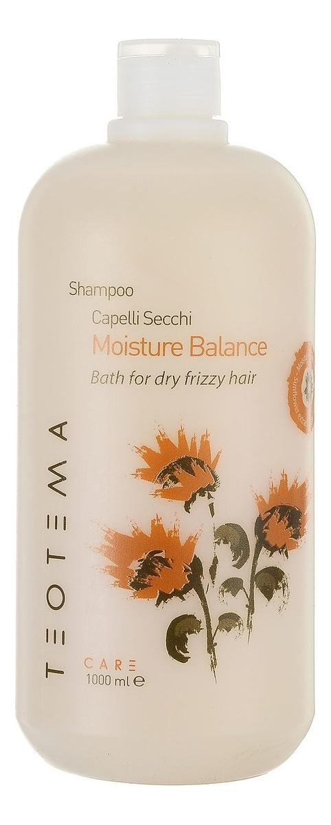 Купить Увлажняющий шампунь для волос Moisture Balance Sampoo: Шампунь 1000мл, Teotema