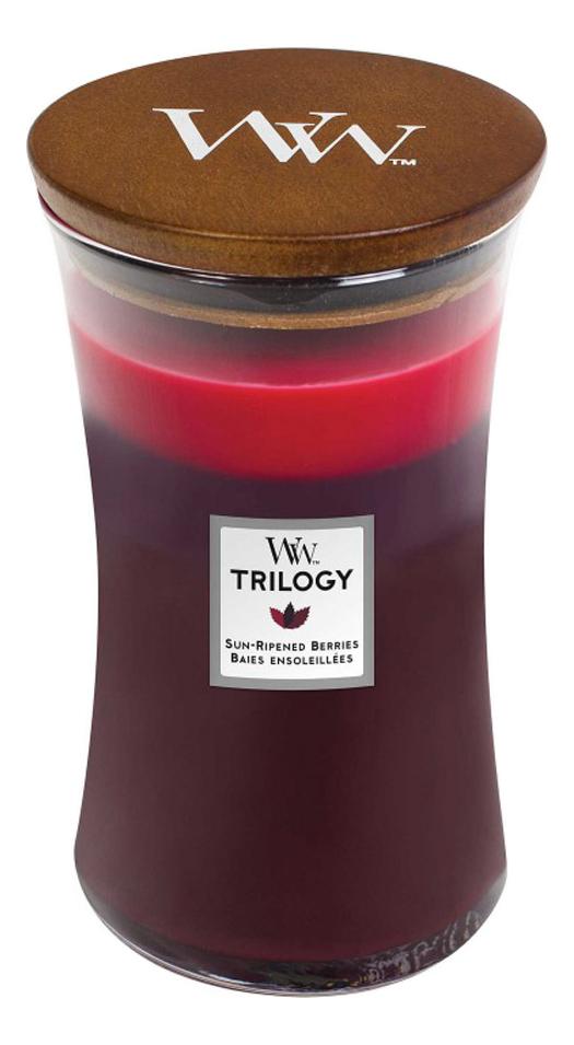 Купить Ароматическая свеча Trilogy Sun Ripened Berries: Свеча 609, 5г, WoodWick