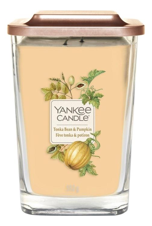 Купить Ароматическая свеча Tonka Bean & Pumpkin: Свеча 552г, Ароматическая свеча Tonka Bean & Pumpkin, Yankee Candle