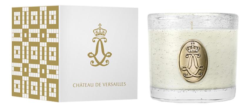 Ароматическая свеча Boudoir De La Reine: свеча 1500г фото