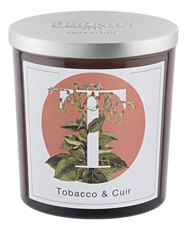 Фото - Ароматическая свеча Табак и Кожа: свеча 350г ароматическая свеча какао и табак свеча 250г
