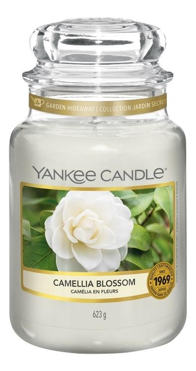 Фото - Ароматическая свеча Camellia Blossom: Свеча 623г ароматическая свеча snowflake cookie свеча 623г