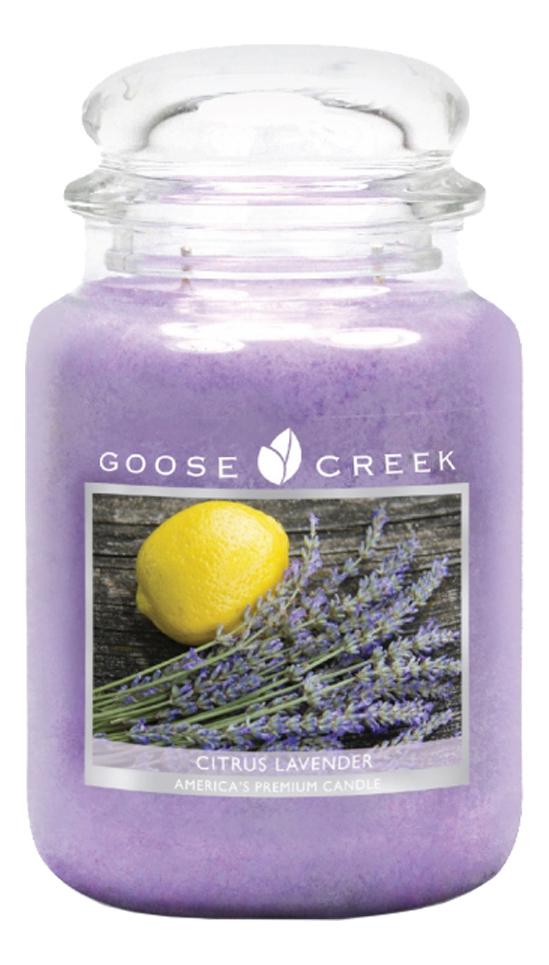 Ароматическая свеча Citrus Lavender (Цитрус и лаванда): 680г