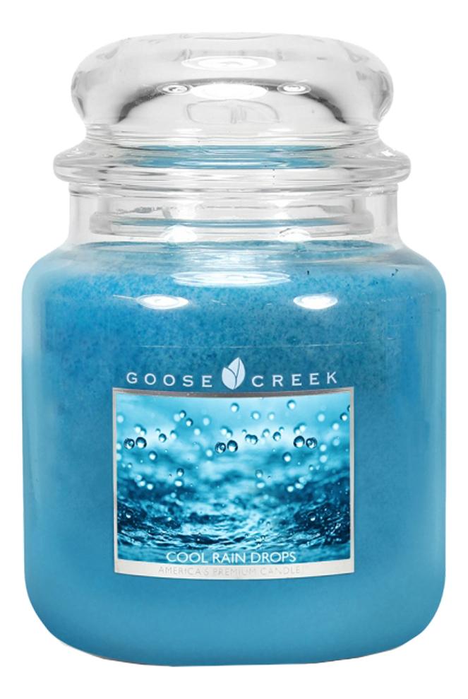 Ароматическая свеча Cool Rain Drops (Холодные капли дождя): свеча 454г ароматическая свеча cucumber rain огуречный дождь свеча в пластиковой гильзе 42г