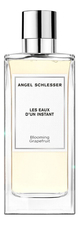 Angel Schlesser  Blooming Grapefruit