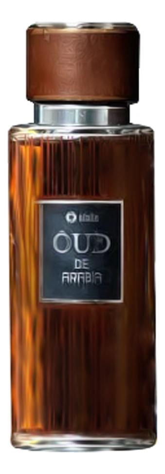 Efolia Oud De Arabia: парфюмерная вода 100мл, арт. 346426, цена 5653 р., фото и отзывы