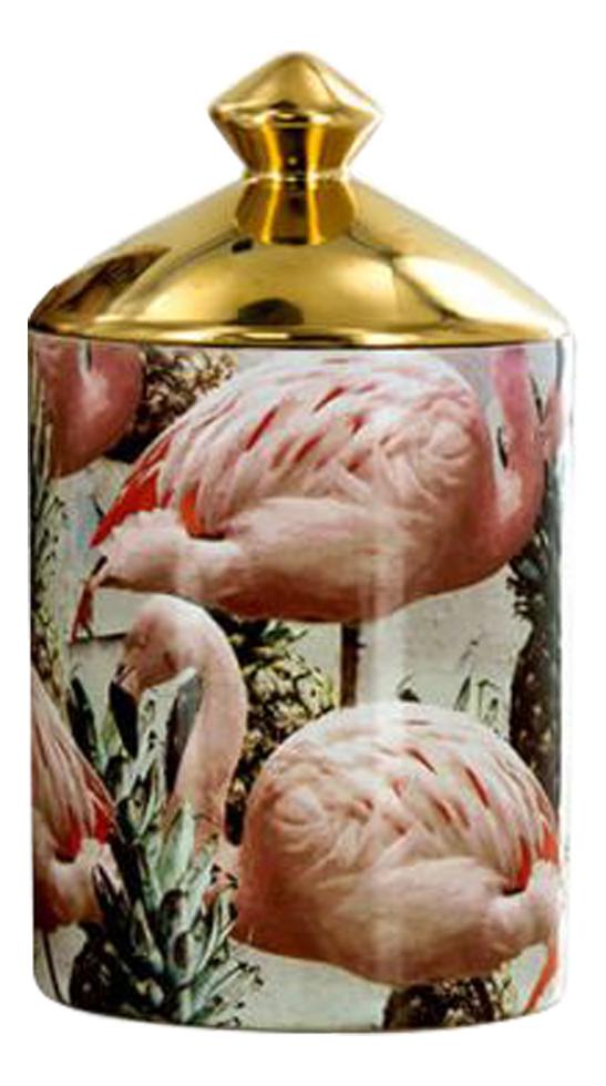 Купить Ароматическая свеча Pinemingos Candle: свеча 320г, Ashleigh&Burwood