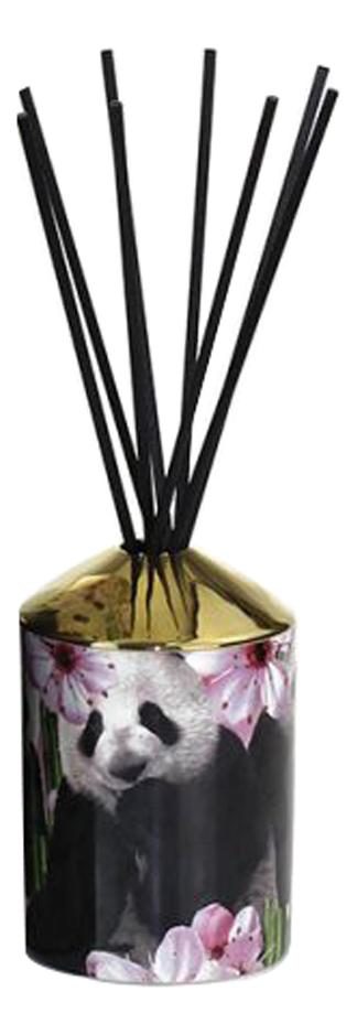 Купить Ароматический диффузор Pandamonium: диффузор 200мл, Ashleigh&Burwood
