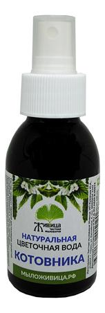 Фото - Натуральная цветочная вода Котовника: Вода 100мл натуральная цветочная вода для лица очищающая и тонизирующая чайное дерево 100мл