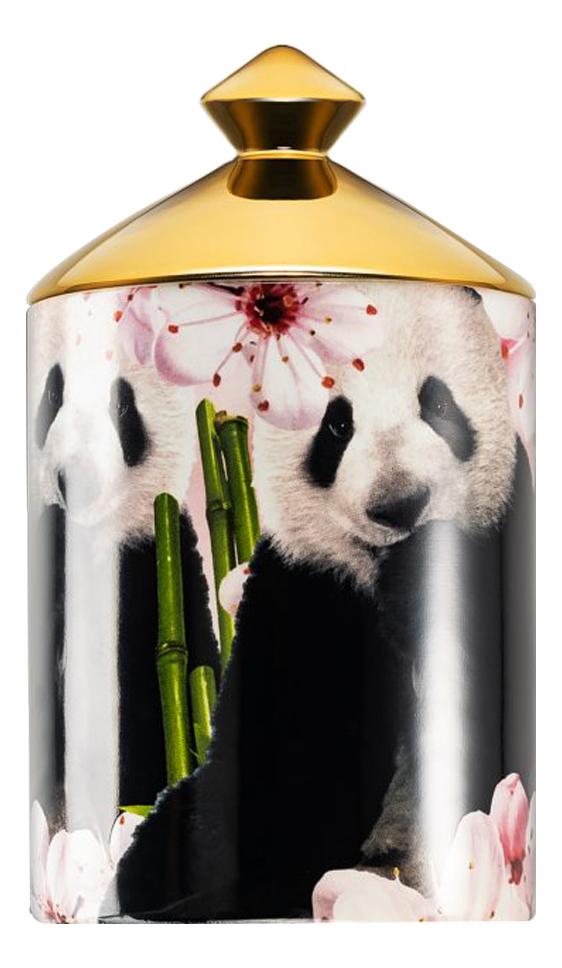 Купить Ароматическая свеча Pandamonium: свеча 320г, Ashleigh&Burwood
